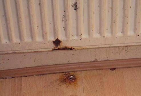 Arkas Law Housing Disrepair Heating Faults